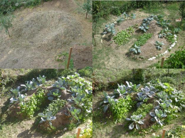 Hugelkultur o Orto senza acqua